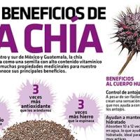 #Infografia Los beneficios de la Chía