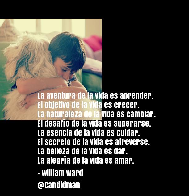 20160922-la-aventura-de-la-vida-william-ward-candidman