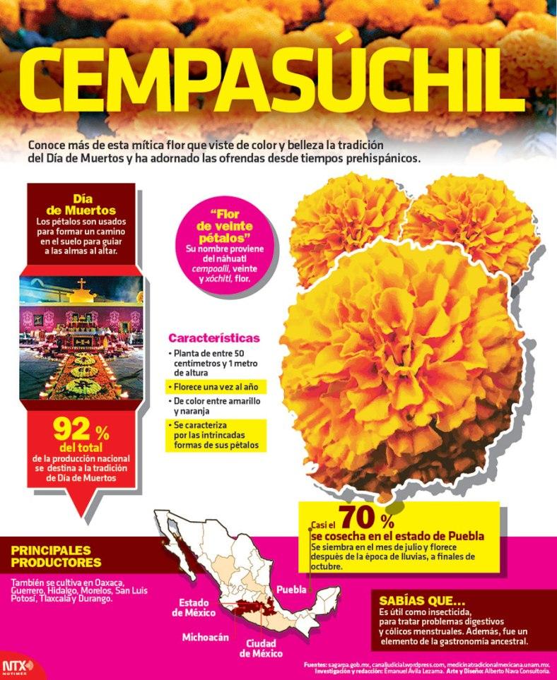 3129-20161025-infografia-cempasuchil-candidman