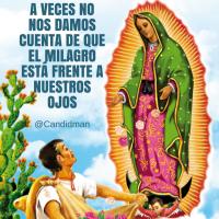 #VirgenDeGuadalupe A veces no nos damos cuenta de que el milagro está frente a nuestros ojos