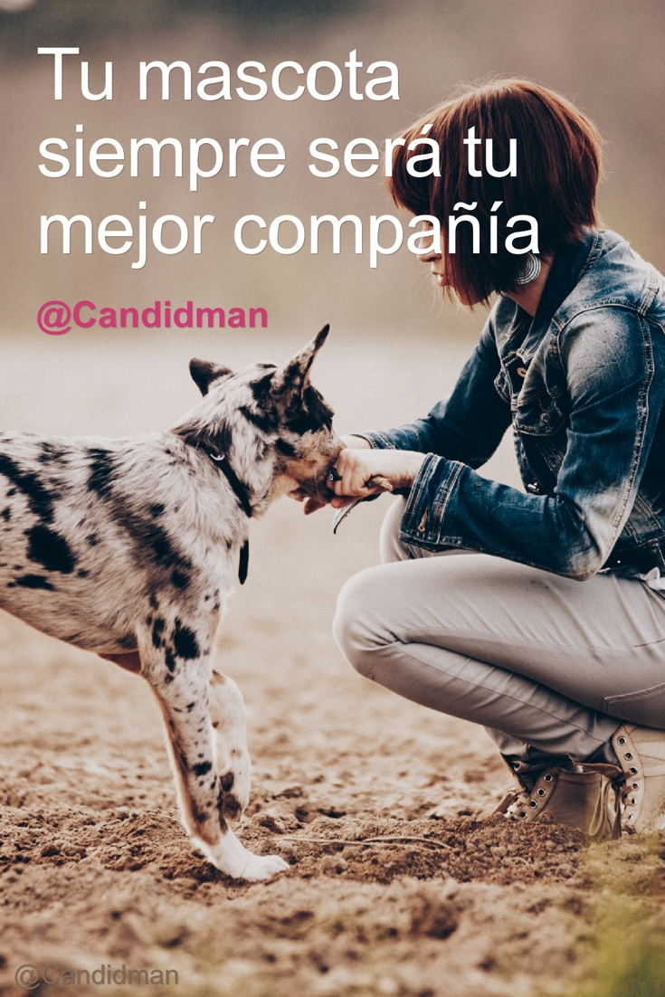 20170110-tu-mascota-siempre-sera-tu-mejor-compania-candidman-pinterest