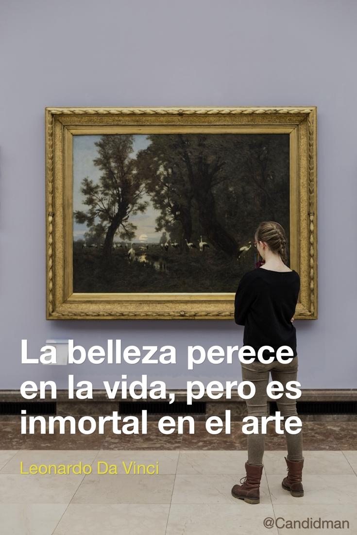 20170123-la-belleza-perece-en-la-vida-pero-es-inmortal-en-el-arte-leonardo-da-vinci-candidman-pinterest