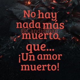 20170215-no-hay-nada-mas-muerto-que-un-amor-muerto-candidman-watermark-instagram